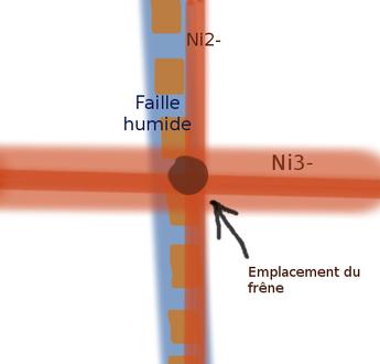 Schéma de l'emplacement du frêne