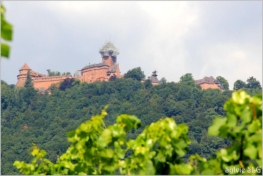 Château du Haut Koeninsbourg