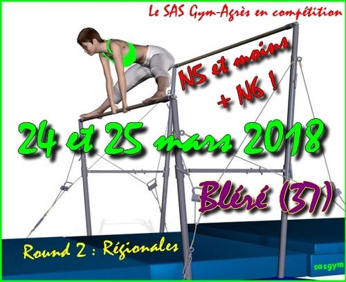 Vidéo : Régionales N4 - 11/15 à Bléré !