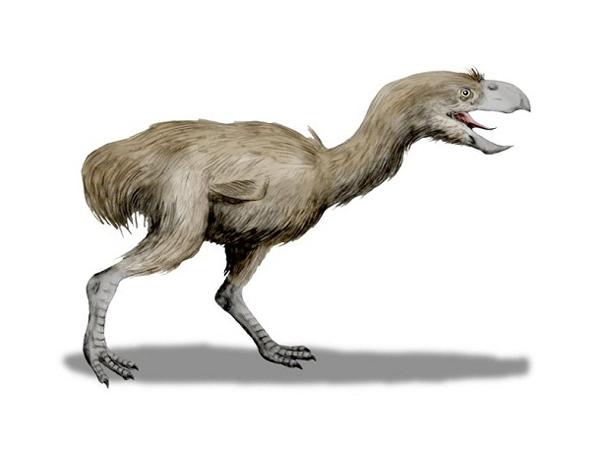 préhistoriques créatures-animaux-4
