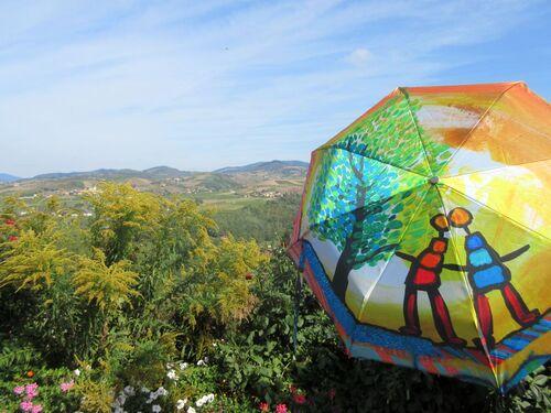 Parapluies dans le Rhône