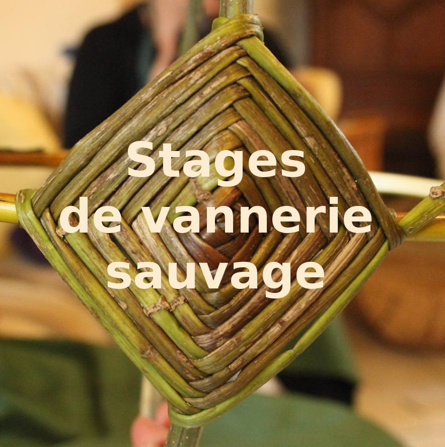 Stages Vannerie sauvage