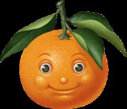 fruitAgrumes