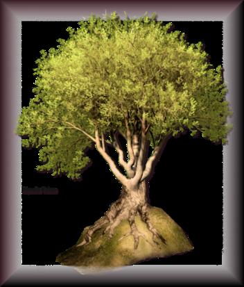 Tubes d'arbre 2963