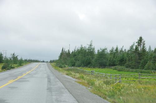 Terre Neuve, sur la route du nord