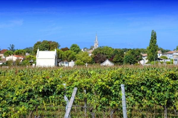 Le village vue de la route de Saint Ciers du Taillon - crédit Philippe Bizet - Saint-Dizant-du-Gua