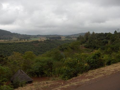 En route vers le Serengeti