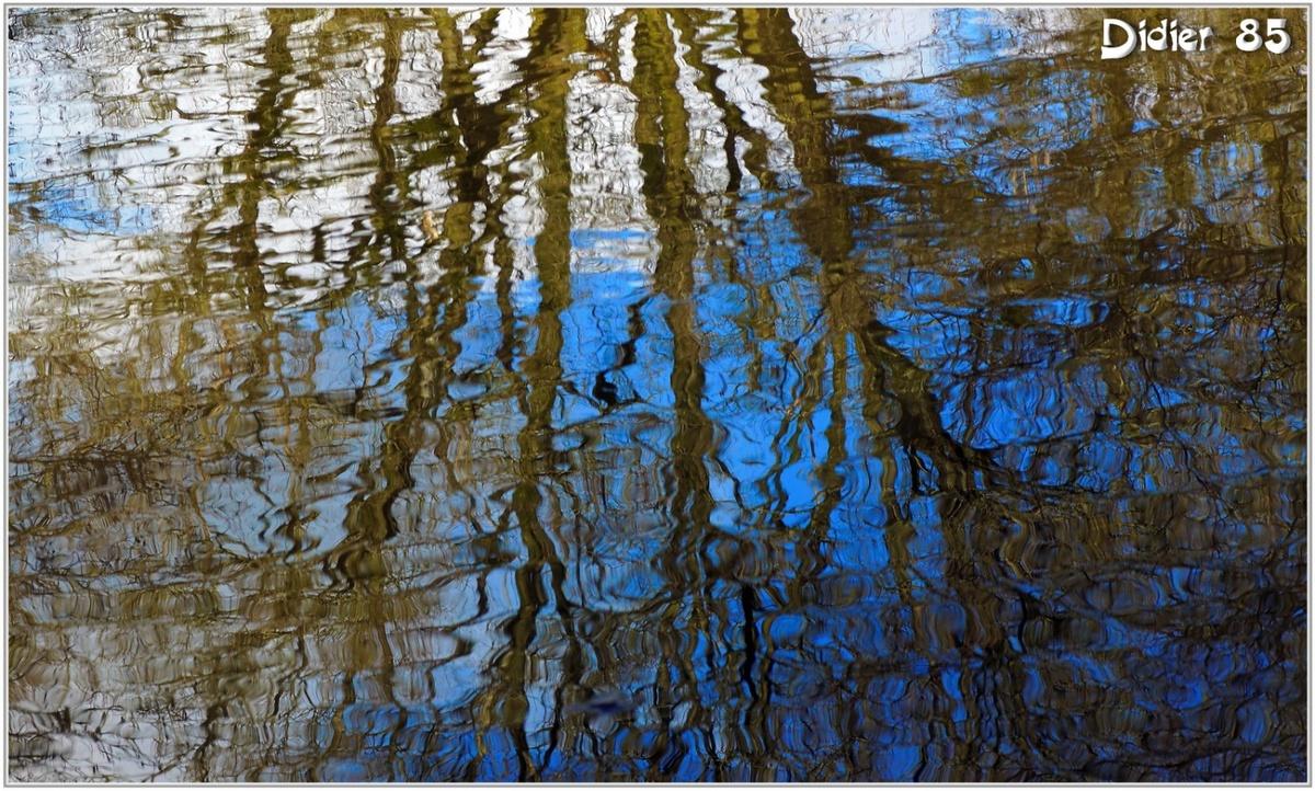 (85) Vendée - La Chaize le Vicomte (7) - Reflet