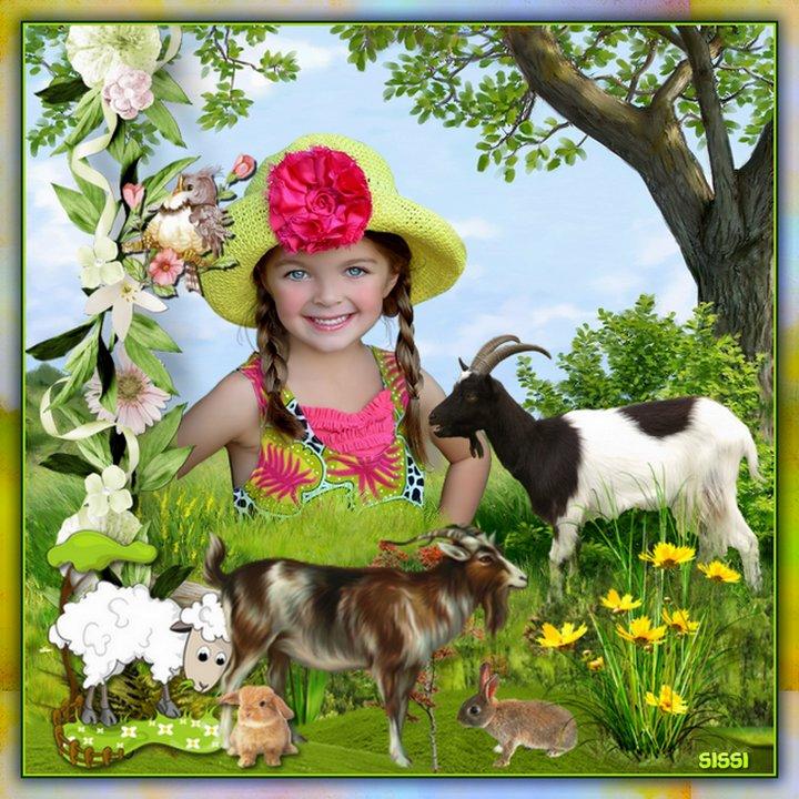 * Les Chèvres  * Atelier de Cerise *