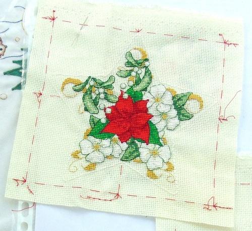 Mon étoile : Poinsettia