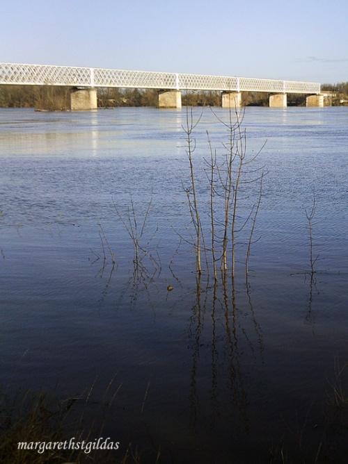 La Loire monte après Joachim - La Loire rise after Joachim