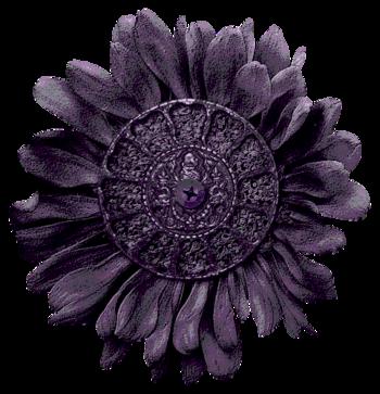 Fleurs Steampunk