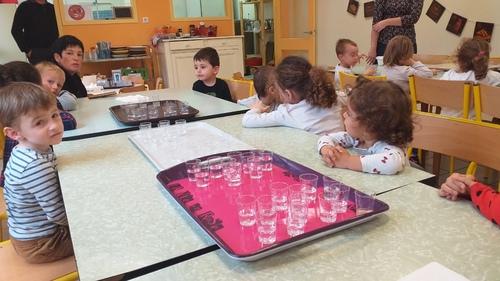 PS MS - Journée du goût : l'eau