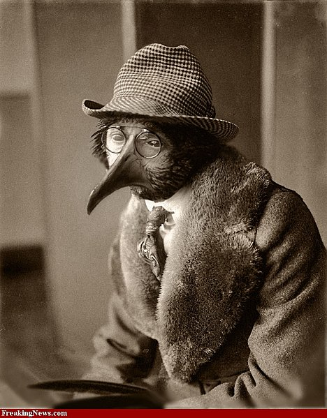 The-Bird-man-of-Lincoln-Ave-circa-1921-47261.jpg
