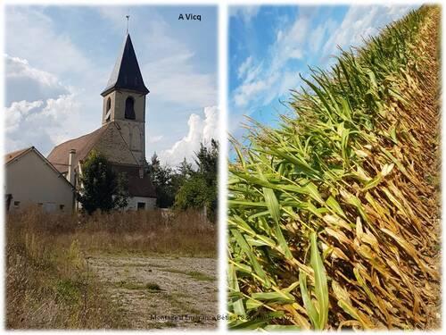 Neauphle-le-Vieux - Vicq : 7 km