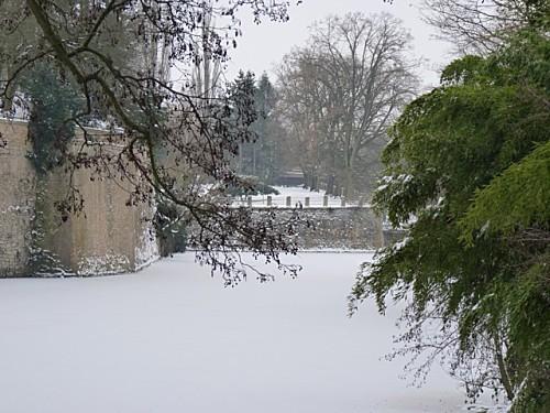 Promenade hivernale 010