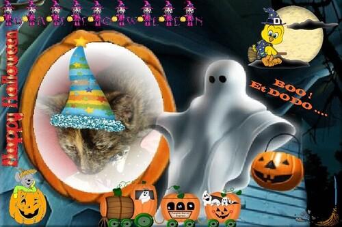 BOOO !!! C'est Halloween !!!