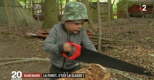 Des écoles en forêt, l'exemple Danois