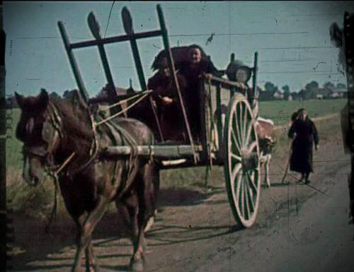 sur la route de l'exode en 1940