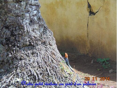 Notre Grande Aventure au CAMEROUN 24