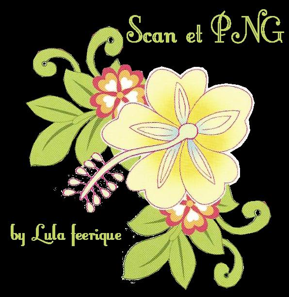 fleur-tropicale-de-Flora