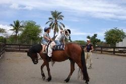 les différentes activités du poney club