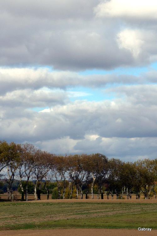 Lauragais:  paysages d'automne