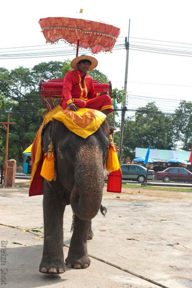 Ayutthaya - Une invitation à la promenade