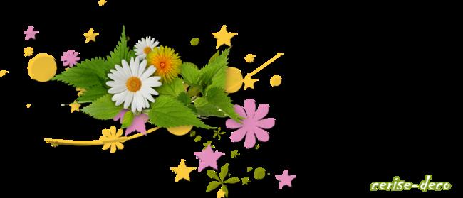 design premières fleurs du printemps