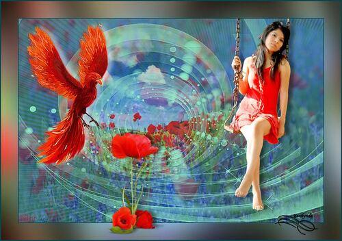 Variations Poppy and bird