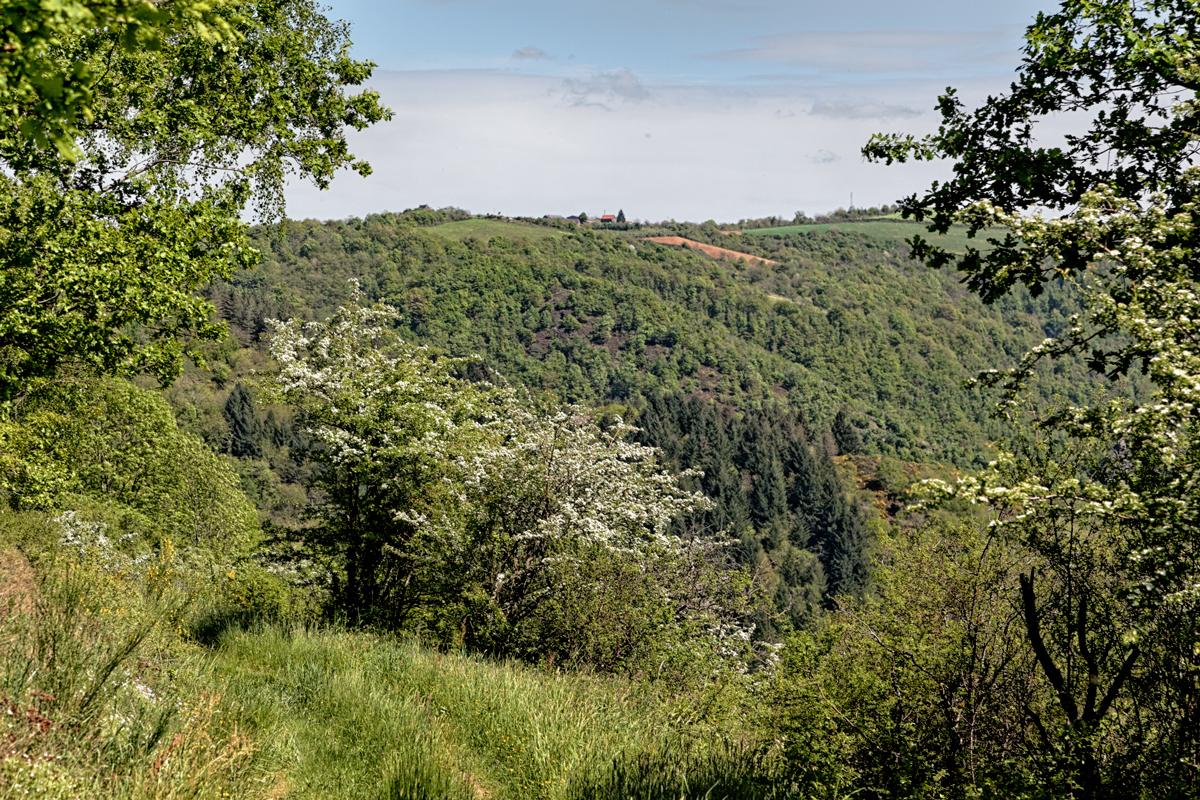 Conques la perle Aveyronnaise - 4