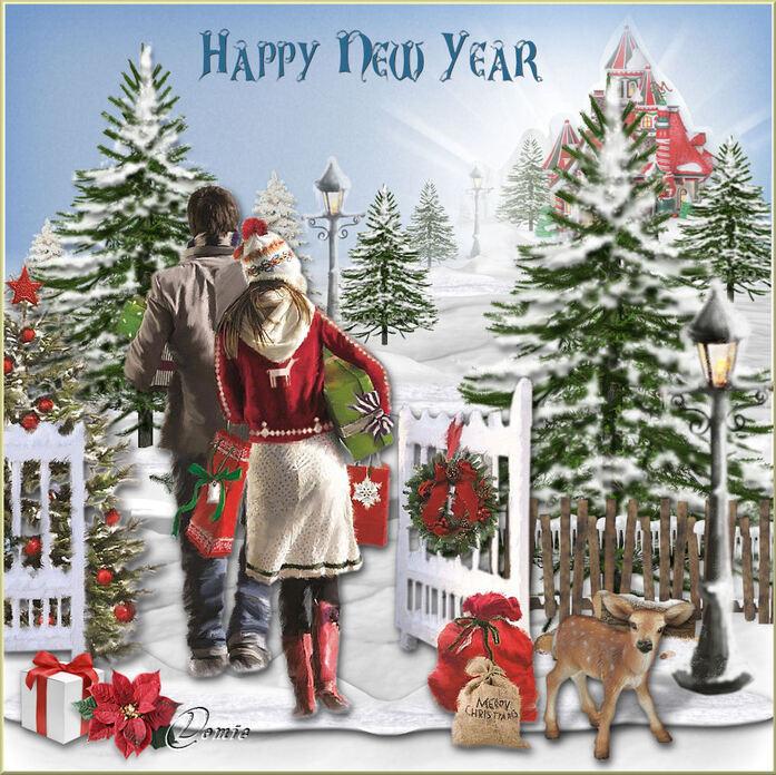 Nouvel an - Janvier 2019