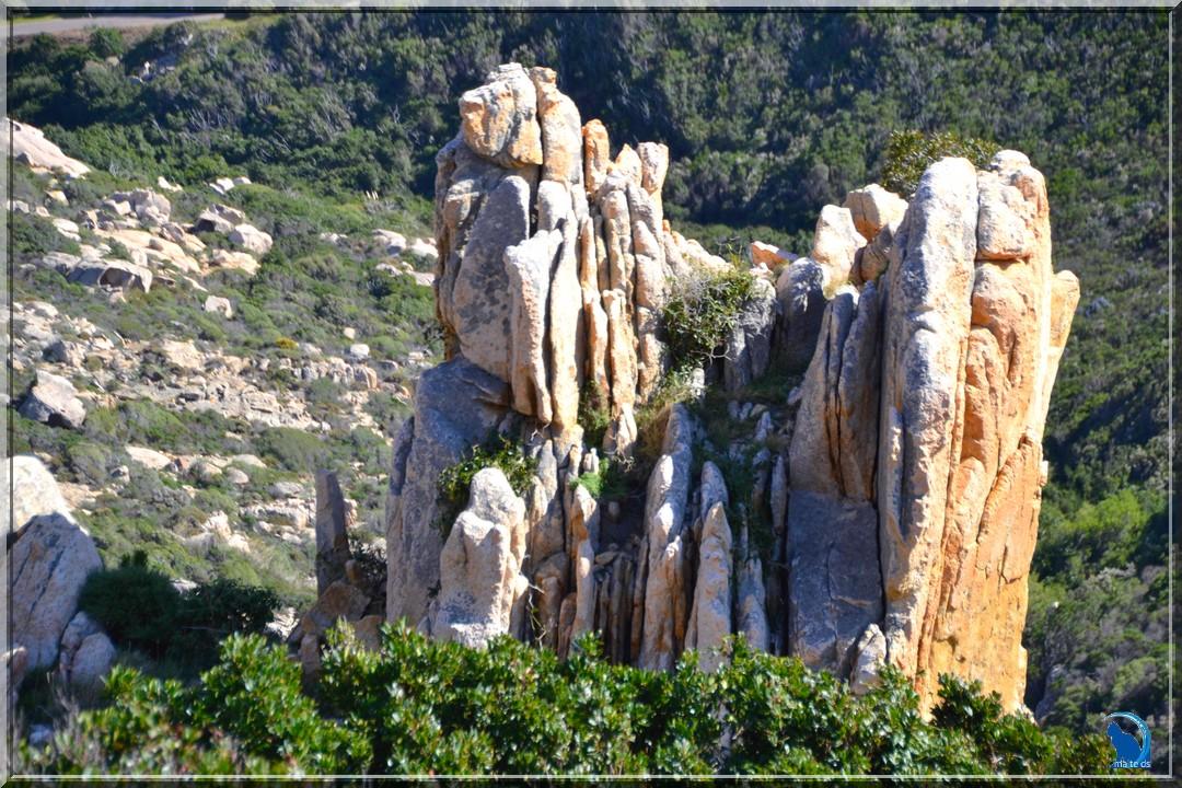 Sur la route de Galéria Calvi Corse