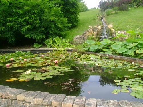 -Le jardin des eaux-