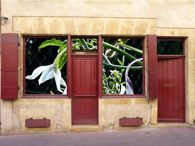 Vitrines insolites Metz 6 Marc de Metz 2011