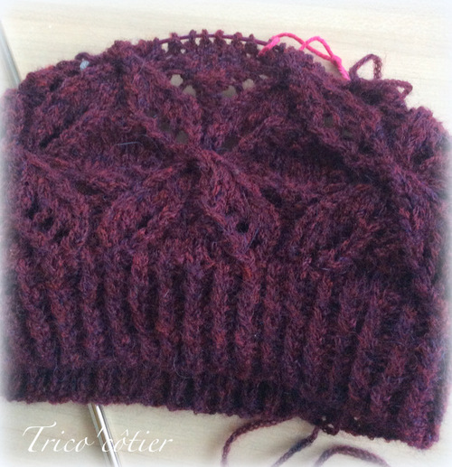 Premier bonnet de l'hiver - Dragonflies Hat