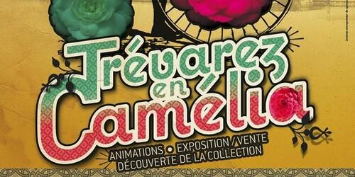Festival du Camélia