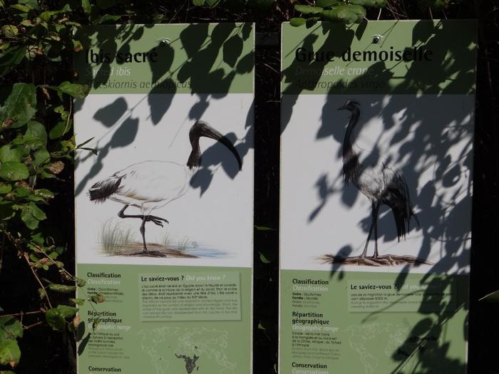 Le parc zoologique de Clères -2-