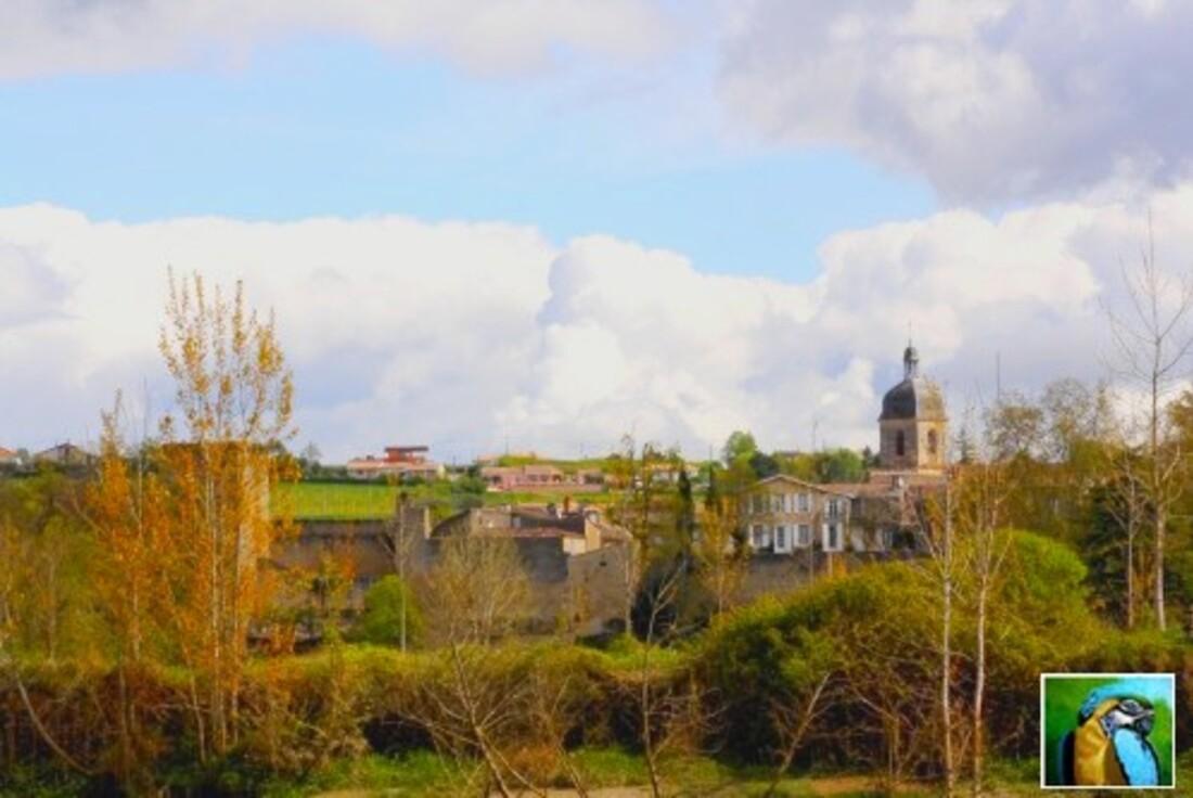 Balade sur la Garonne 3/5