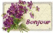 Cartonnettes Violettes !