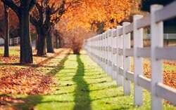 Autumn run dry to raise water spirit beauty