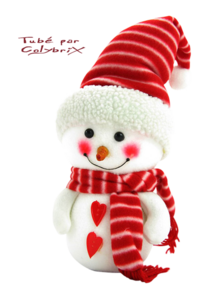 1.Tubes Noël