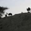 Maroc Tata Départ piste pour Aguinane Bivouac