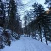 Neige continue à partir de 950 mètres