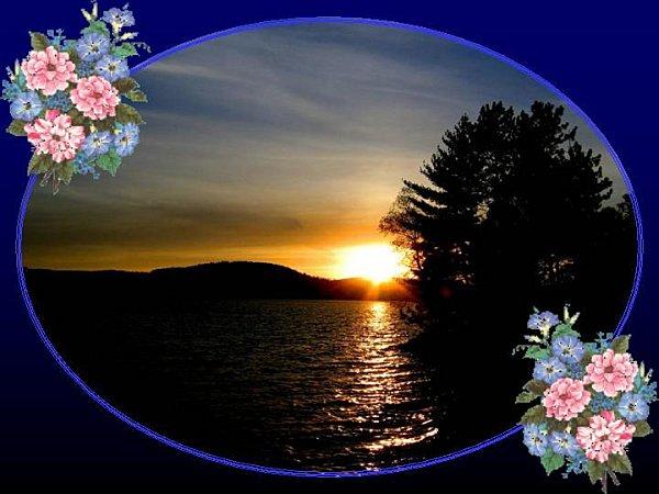 Diaporama pps nature fleurs et paysages orange8454 - Initiatives fleurs et nature ...