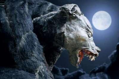 Le loup-garou de Dole