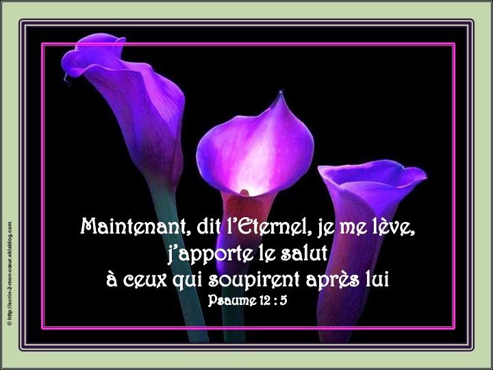 L'Eternel apporte le salut - Psaumes 12 : 5