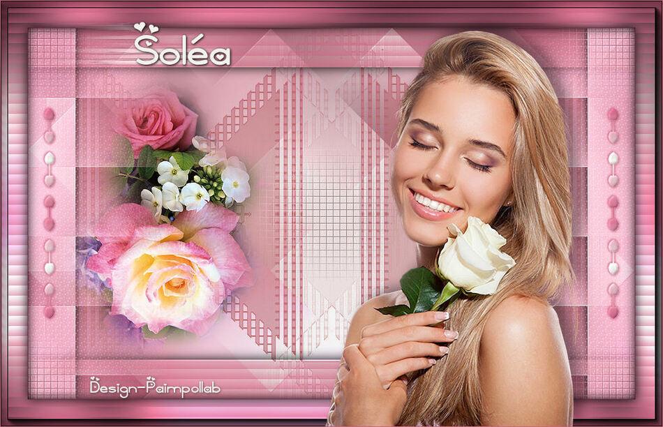Versions Soléa