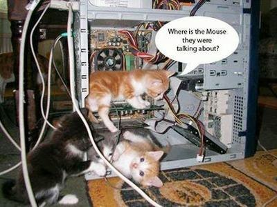 Humour:  5 images drôles, pas drôles