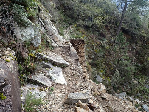 Haute vallée du Cruzzini